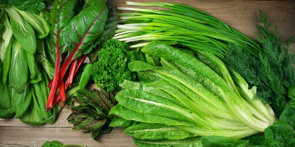 Saláták makrotápanyagtartalma